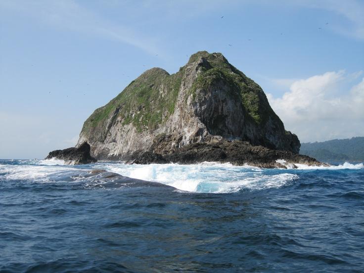 La isla de los Pájaros recibe las aves migratorias que hacen una parada allí para alimentarse y criar a sus polluelos.