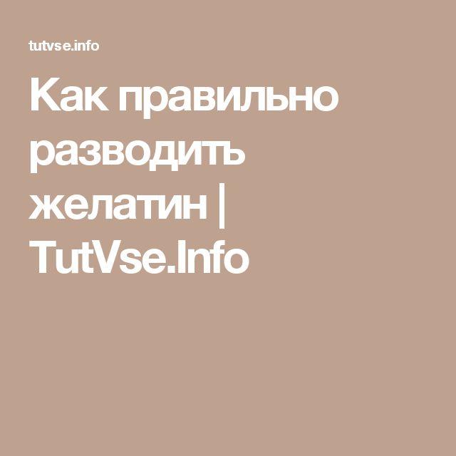 Как правильно разводить желатин   TutVse.Info