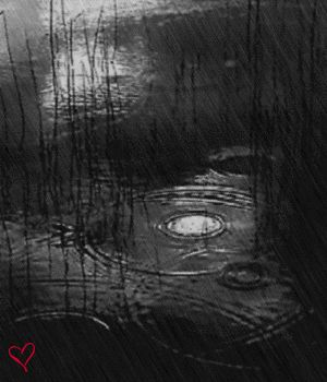"""""""Falling Rain"""" (Animated) by CydneyX... click on it (twice) to see it """"move""""."""