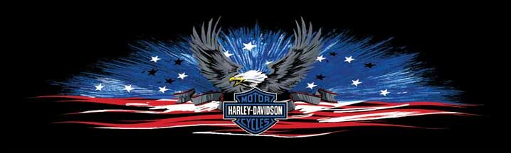 Harley Davidson Shining Sea Rear Window Graphic Part