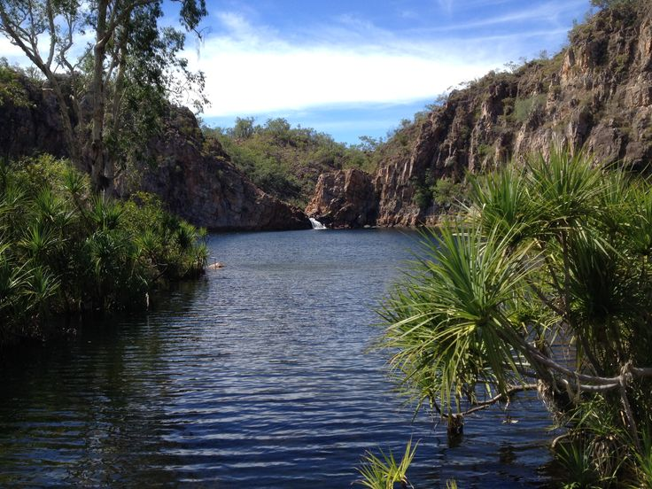 Edith Falls, Nitmiluk National Park near Katherine in the Northern Territory. An unusual place to snorkel. Lots of turtles and easy access for beginner snorkelers.