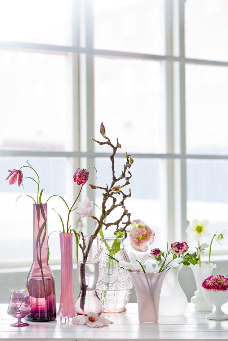 Plocka in vårens blommor från trädgården - Sköna hem