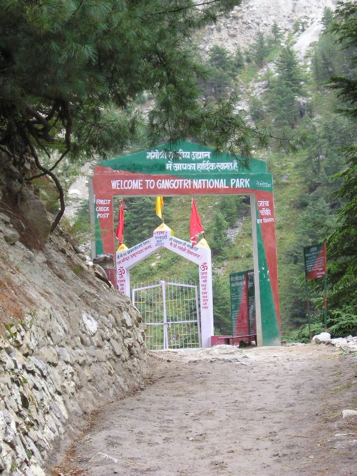 Gangotri National Park is a national park located in #Uttarkashi District #Uttarakhand, #India. The size of this national park is about 2,390 square km. The park provides majestic beauty of coniferous forests and grandeur of glacial world combined with lush green meadows. #nationalparks #wildlife #travel