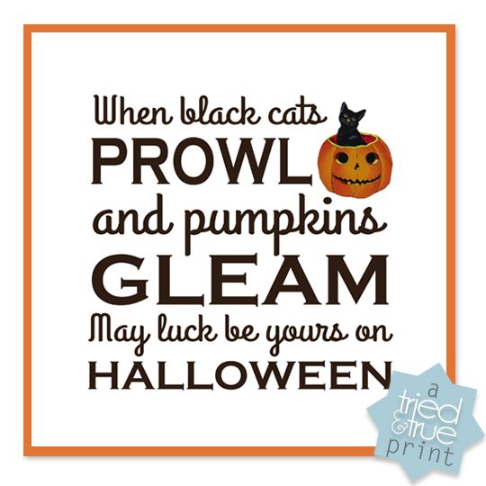 halloween cat sound effects