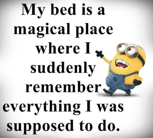 Funniest Minion Quotes Of The Week  :) https://www.pinterest.com/lilyslibrary/ this is me every. single. night