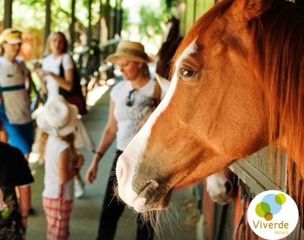 Huzur dolu güzel bir tatil için #Viverde #Hotel #Berke #Ranch #Horse #Riding