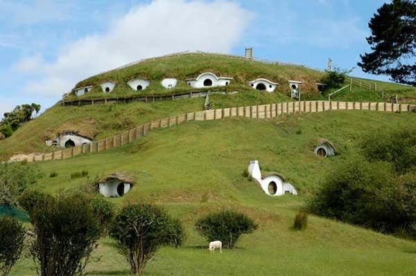 The Hobbit scenes from Lord of the Rings Movie Trilogy were filmed on a hillside lot in Matamata, New Zealand. Now the little Hobbit Homes have become a tourist attraction, but also they became homes for some of the sheep from a nearby farm. The interiors of these white structures were never finished because the scenes shot inside were actually filmed on a studio set.