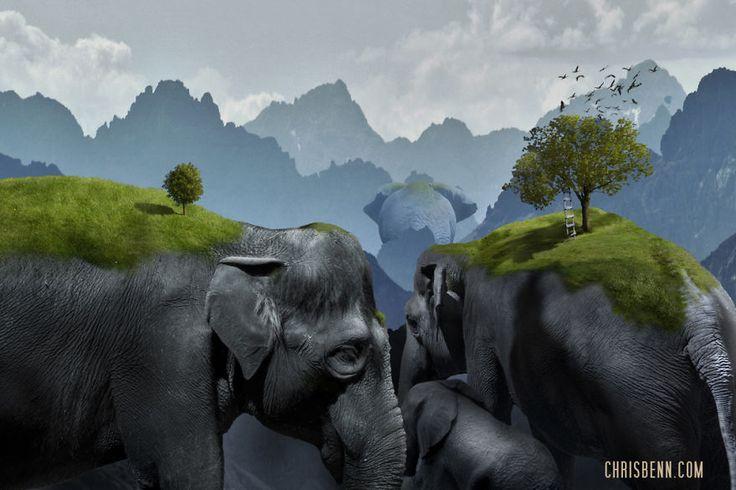 les-animaux-surrealistes-de-chris-bennett-11