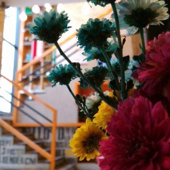#flores #naturales en #bixi #coffee #house