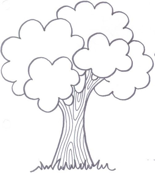 Katy Sacie - Fotók - Google+ - primavera, tree coloring