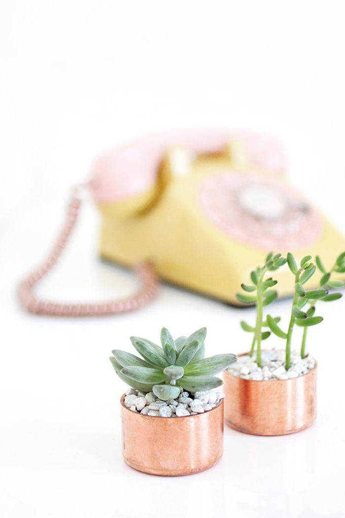 » MY DIY | Copper Cap Succulent Holder
