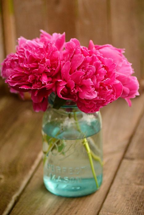 Blue mason jars look lovely with peonies in them.