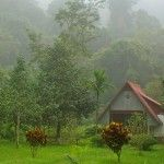 Guest house in Cuc Phuong National Park