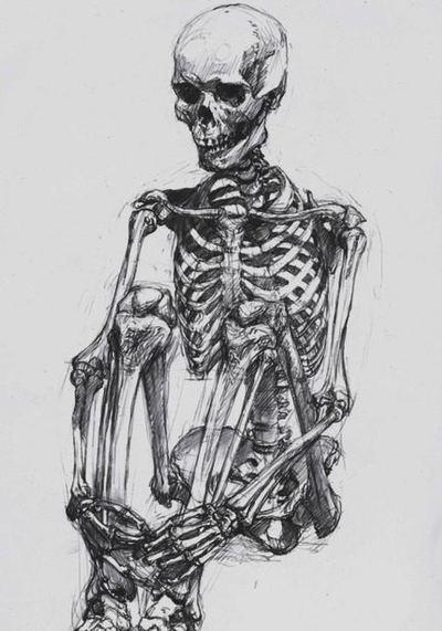 how to draw a skeleton body