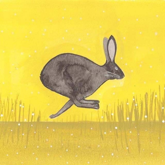A March Hare - Illustrated by Clay Horses Design      #hare #animals #yellow #drawing #painting #illustration #illustrator #running #wild #hare #blackrabbit #gouache #ink #nature #outdoors #grass #plants #fast #adventure #clayhorses