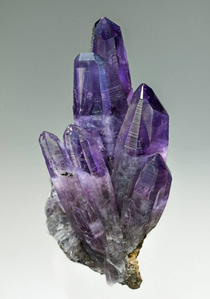 Amethyst Cluster from Mexico   A cluster of lustrous glassy amethyst crystals with very deep violet color showing the curved edges typical of the locality. Specimen size 5.4 x 6.5 cm. Locality: Amatitlán, Mun. de Zumpango del Rio, Guerrero, Mexico. / Mineral Friends <3