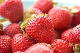 Onze aardbeienwijn is puur biologisch: er komt geen bestrijdingsmiddel aan te pas. En dat proef je.