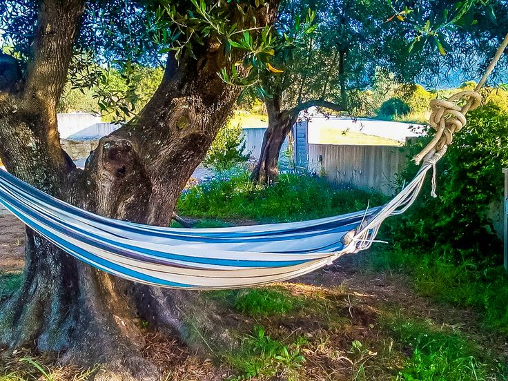 cicada vacation home is for fun lovers up to 8