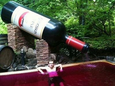 No thank you, I'd rather drink wine. LOL!Wine Pools, Wine Bath, La Piscina, Drinks Wine, Wine Apparel, Spas, Spa Whore, Spa Ahs, Random Stuff