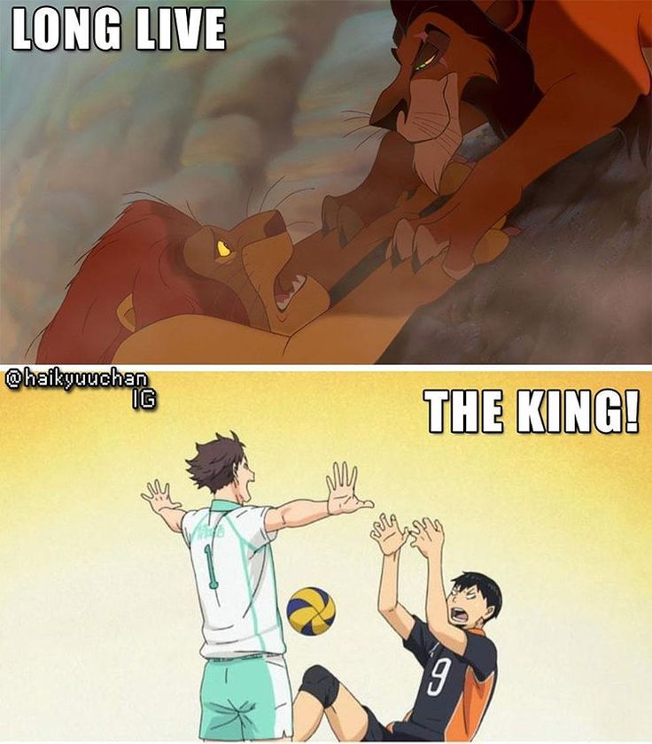 """YES BUT Scar was never a king and Oikawa is The Great King  USE CODE """"PIN5"""" TO RECEIVE 5% OFF Shop now at www.animecart.com"""