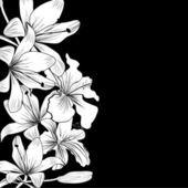 Pozadí s bílými květy — Stock vektor