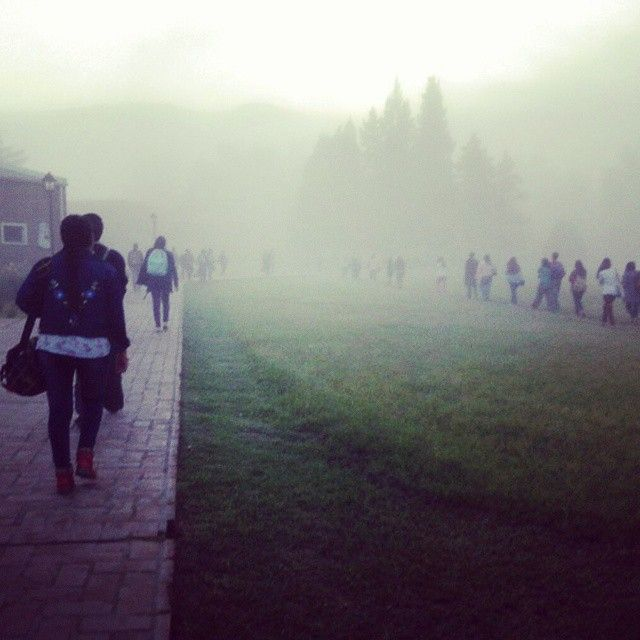Neblina en el Campus