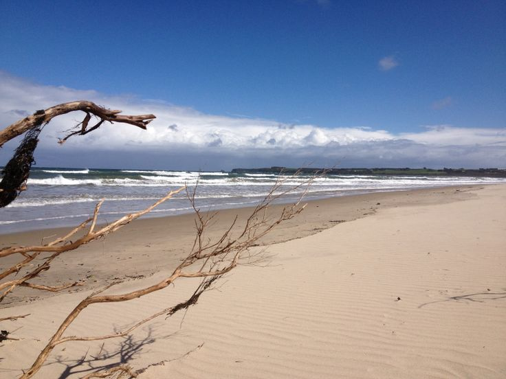 Windswept Inverloch Beach (South Gippsland, Victoria, Australia)