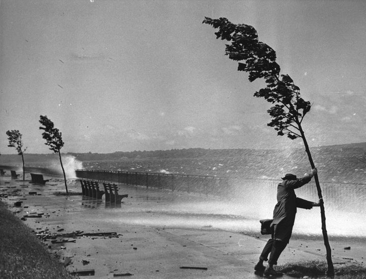 droomboot:  Hurricane Carol in Brooklyn, New York (1954)