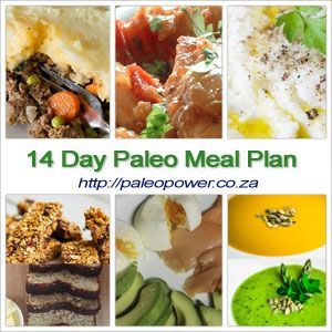 Try this gluten-free, sugar-free 14 Day Paleo Diet Plan for your health & weight