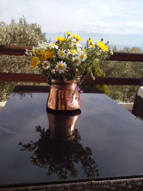 Spring in Galaxidi Greece