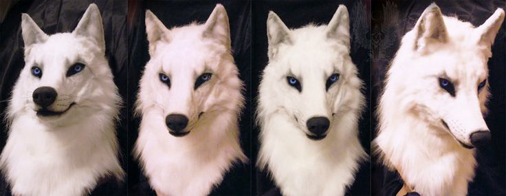 """A new mask for partial suit finally done! Features: - Very soft realistic fur two types of """"Arctic wolf/Fox"""" - Soft ears - Whiskers horsehair - Light shade by airbrush - Very good review - Fu..."""