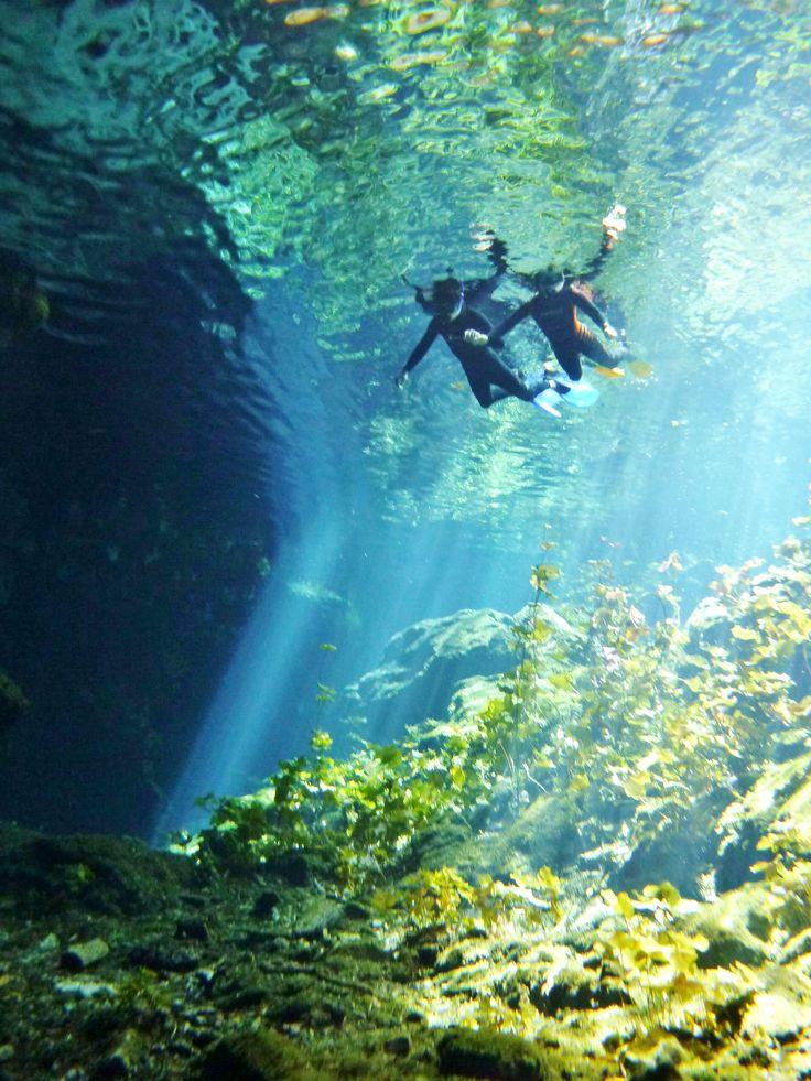 4.セノーテイキル - 【大人リゾート】メキシコのカンクンが、カリブの楽園である7つの理由 - Find Travel