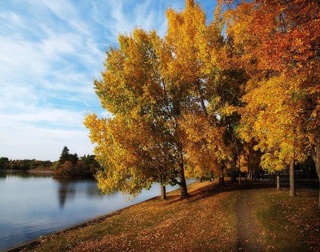 Wascana Lake in Autumn - #Saskatchewan