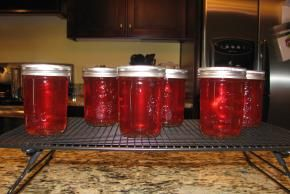 Recipe for Peach Jelly.  Use this recipe for the canning how to.  NOT VEGAN, contains butter.