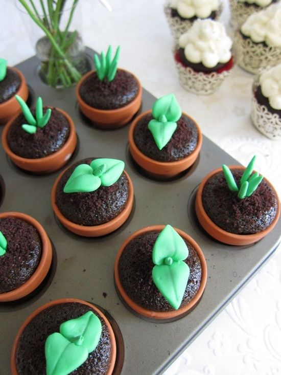 Sweet Sprout Cupcakes - made your favorite chocolate cupcake recipe, place batter in mini terra cotta pots and place in cupcake pan, bake, make green edible fondant plant sprouts.  How | http://cooking-tips-284.blogspot.com