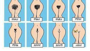 Https://k61.kn3.net/taringa/8/0/0/6/B/2/ele_efe/DAF.jpg. Rasurarse el vello se ha convertido en una moda sexy para muchos hombres y mujeres. ¿Acaso te imaginaste alguna vezque por el hecho de verte sexy en la intimidad esto puede afectar tu salud?...