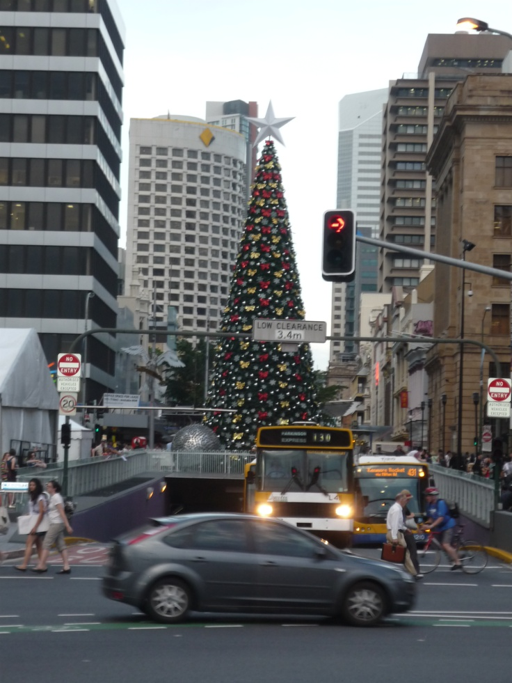 Christmas tree. Brisbane, Australia.