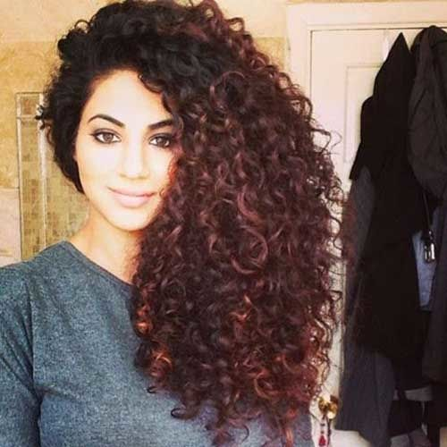 19 Gorgeous Haircuts For Naturally Curly Hair Kyra Sedwick