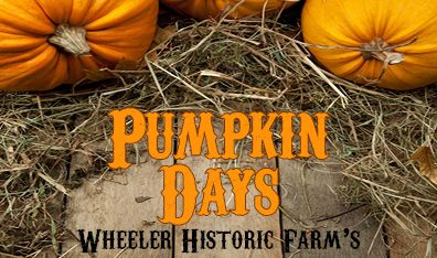Wheeler Historic Farm, pumpkin days
