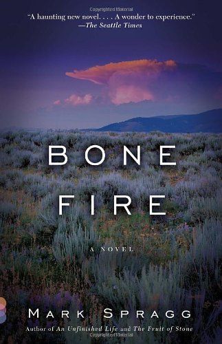 Bone Fire: A novel by Mark Spragg http://www.amazon.com/dp/0307474356/ref=cm_sw_r_pi_dp_1LoCub1E8V3P3