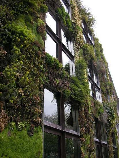 Paris Museum covered with plants - amazing!