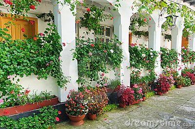Flowers at monastery. Monks cells with lot of flowers. Pitesti, Trivale Park, Romania.