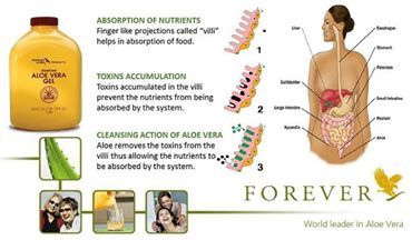 This amazing stabilised inner leaf of aloe, help for many support your healthy life style.   http://www.aloeforever-gh.myforever.biz/