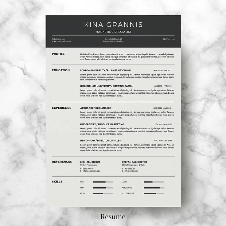 Basic Resume Templates 15+ Examples to Download Use Now di