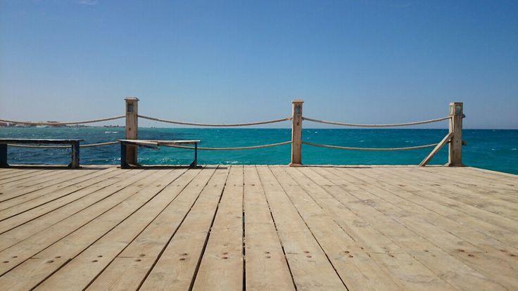 #Red Sea #el gouna