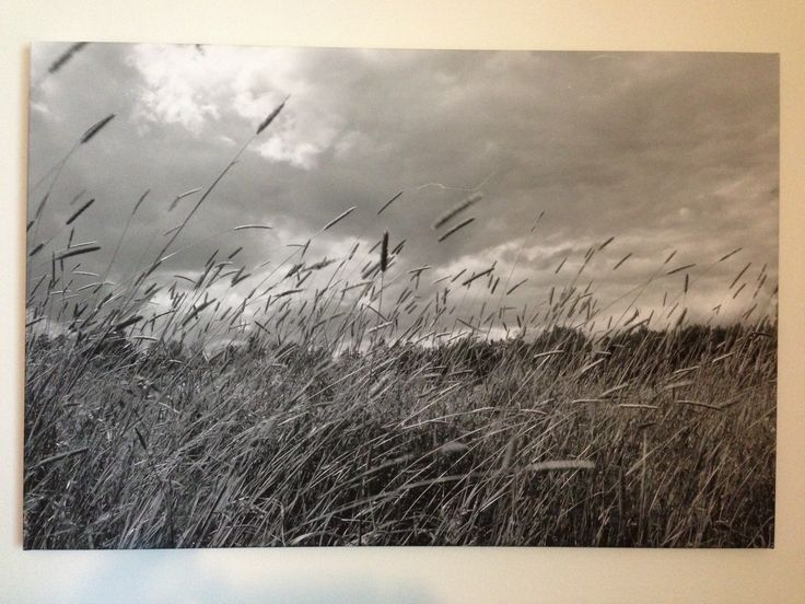 Black and white photo-print on canvas. Measures 65x90 cm. With acoustic dampening material 30mm thick.