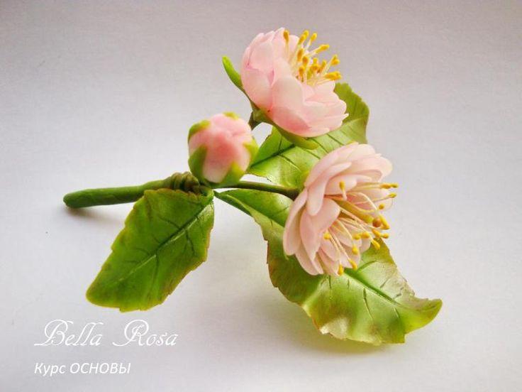 школа лепки цветов, сиреньшкола лепки цветов, подснежники