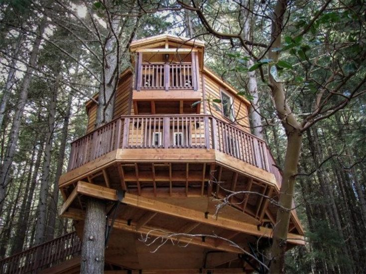 23 incredible treehouse rentals in the us territory