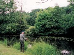 """Habay-La-Neuve - Habay-La-Neuve,The two Habays – the """"Vieille"""" (Old) and the """"Neuve"""" (New) – are situated within the Ardennes and Gaume region and extend along t... Check more at http://carpfishinglakes.com/item/habay-la-neuve/"""