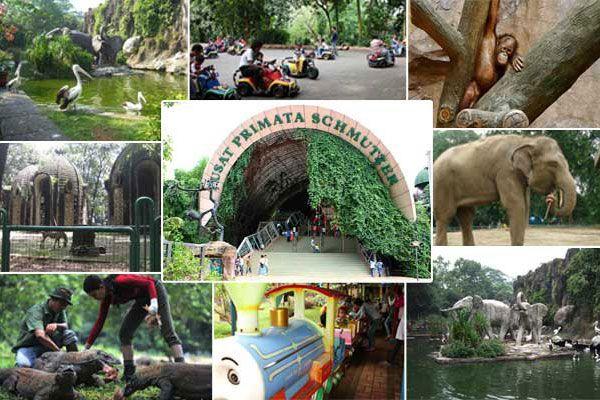 98 Ribu Pengunjung Banjiri Kebun Binatang Ragunan Jelang Akhir Libur Lebaran